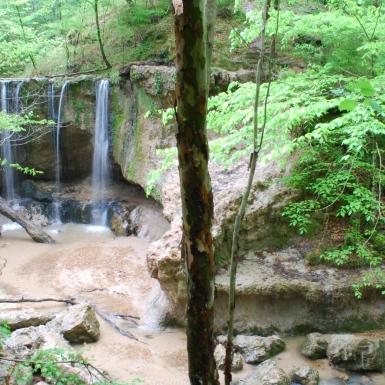 Clark Creek Natural Area, MS